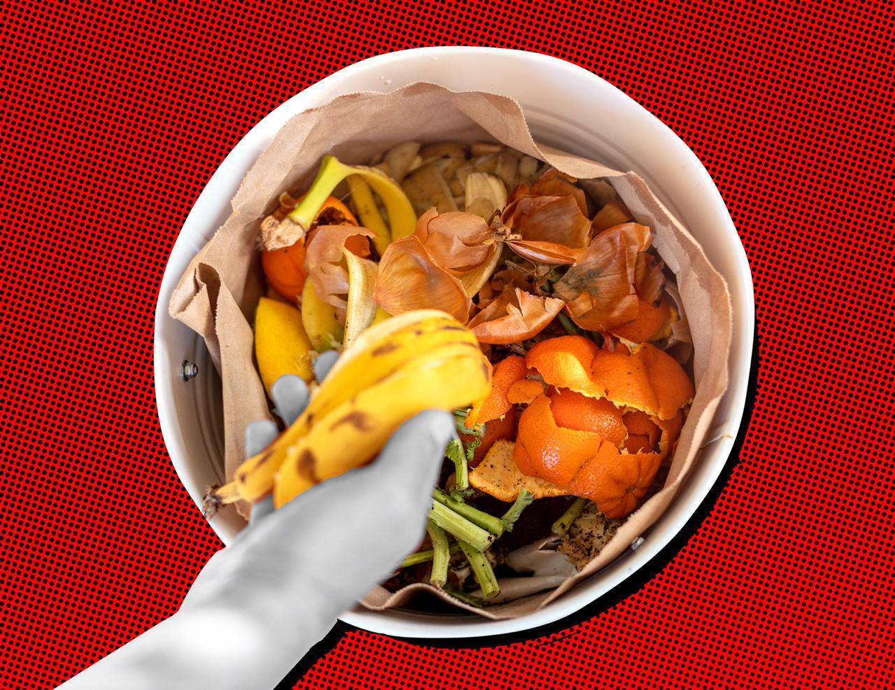 Cara Mengurangi Jumlah Sampah Organik dari Sisa Sayur dan Buah - Amild.id